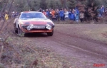 TR7 Rally Cars_39