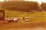 TR7 Rally Cars_49